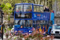 1 Day Hop-On Hop-Off London Sightseeing Bus Tour