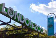 ZSL London Zoo Tickets