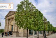 Priority Access to Musee de L'Orangerie