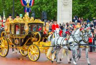 The Royal Mews at Buckingham Palace Entrance Ticket